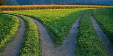 discernment-roadfork1