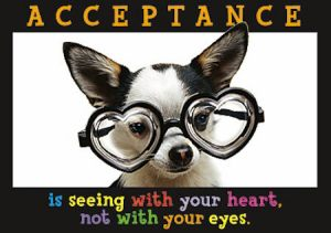 acceptancedog